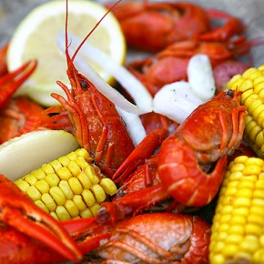 "New IN TOUCH Magazine Essay: ""Kill and Eat: A Story of Life, Death, and Crawfish"""